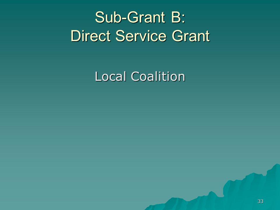 33 Sub-Grant B: Direct Service Grant Local Coalition