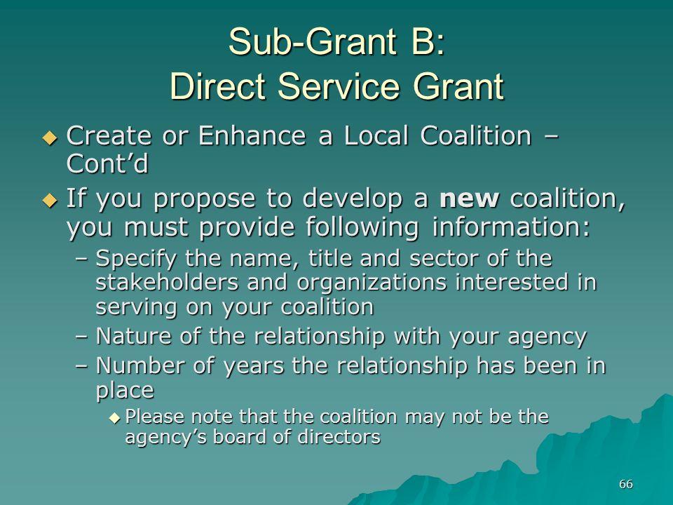 66 Sub-Grant B: Direct Service Grant Create or Enhance a Local Coalition – Contd Create or Enhance a Local Coalition – Contd If you propose to develop
