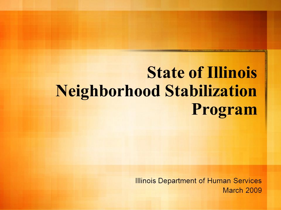State of Illinois Neighborhood Stabilization Program Illinois Department of Human Services March 2009