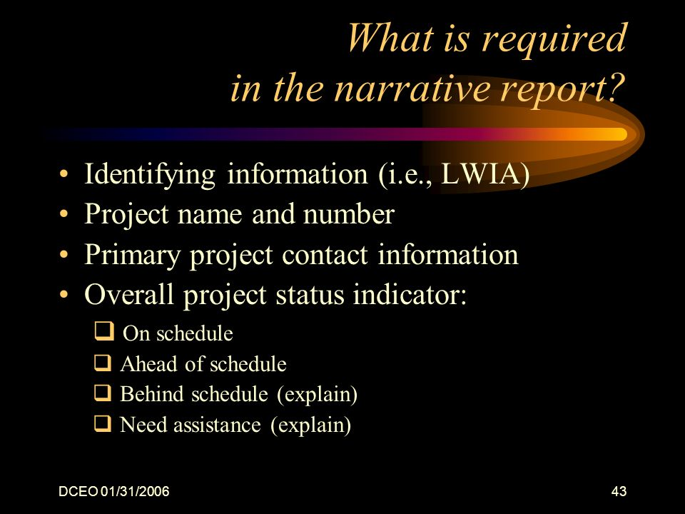 DCEO 01/31/200643 What is required in the narrative report.