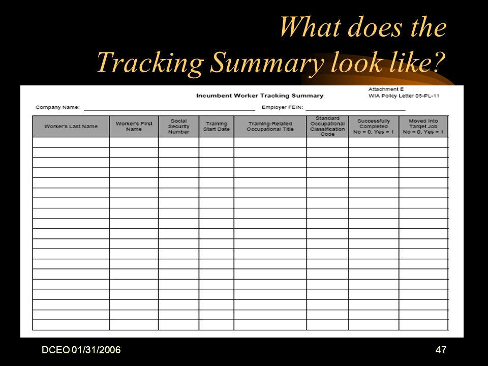 DCEO 01/31/200647 What does the Tracking Summary look like