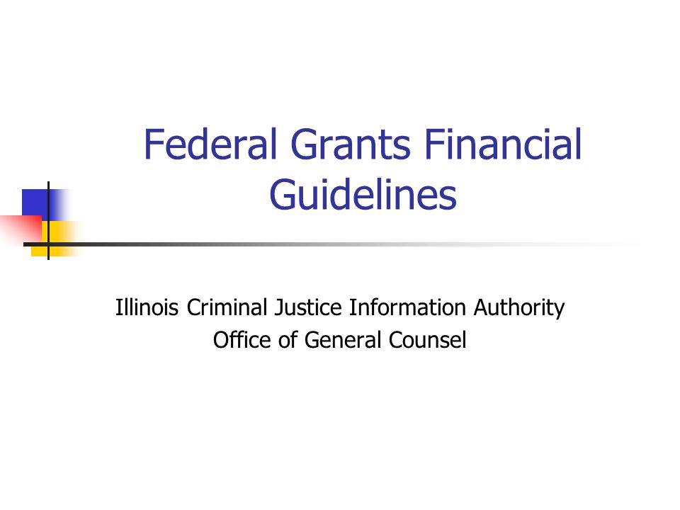 12 Cost Allowability As listed in the Federal Grant Financial Guidelines, costs must be: Necessary and reasonable for the administration of the program.