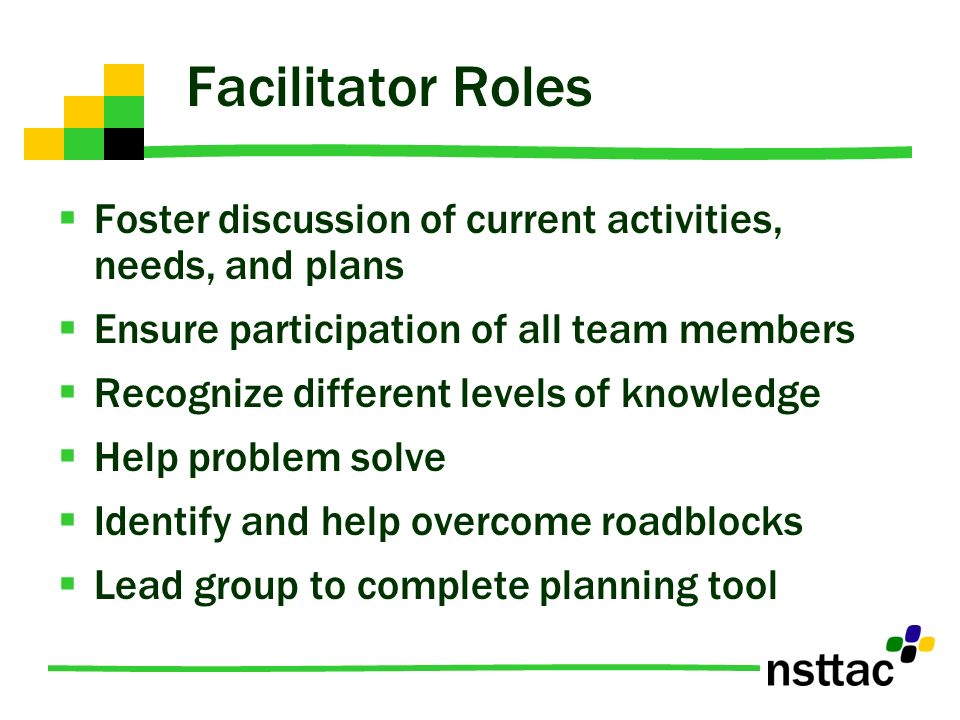 Facilitator Roles Foster discussion of current activities, needs, and plans Ensure participation of all team members Recognize different levels of kno