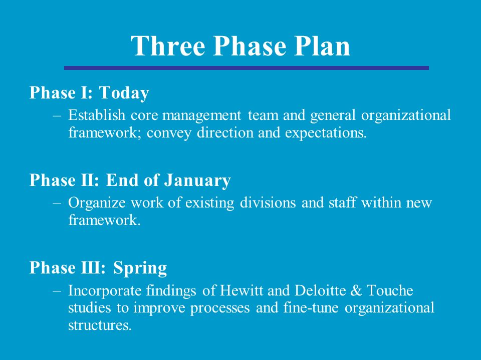 Three Phase Plan Phase I: Today –Establish core management team and general organizational framework; convey direction and expectations.