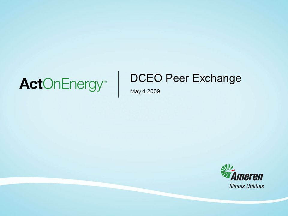 DCEO Peer Exchange May 4.2009