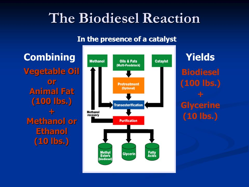 The Biodiesel Reaction Vegetable Oil or Animal Fat (100 lbs.) + Methanol or Ethanol (10 lbs.) Biodiesel (100 lbs.) + Glycerine (10 lbs.) In the presen