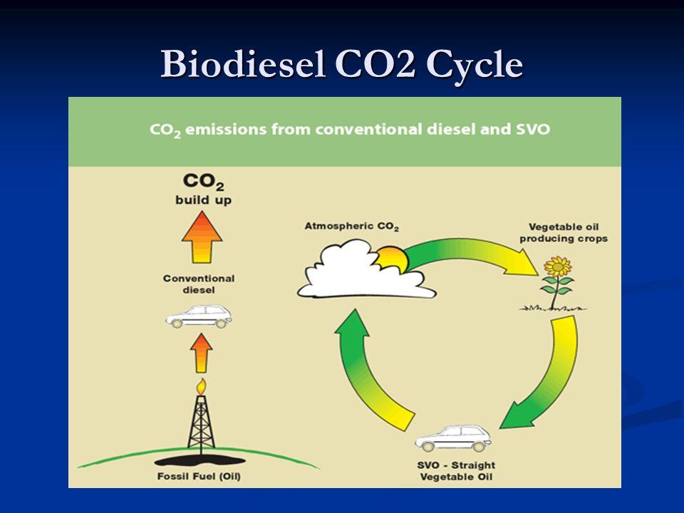 Biodiesel CO2 Cycle