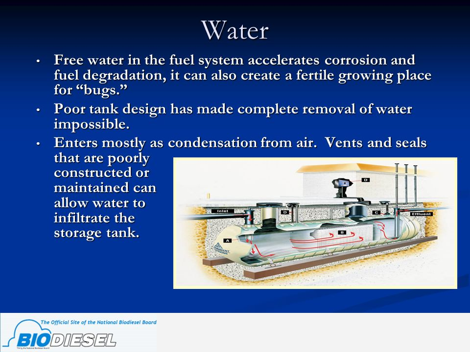 Water Free water in the fuel system accelerates corrosion and fuel degradation, it can also create a fertile growing place for bugs. Poor tank design