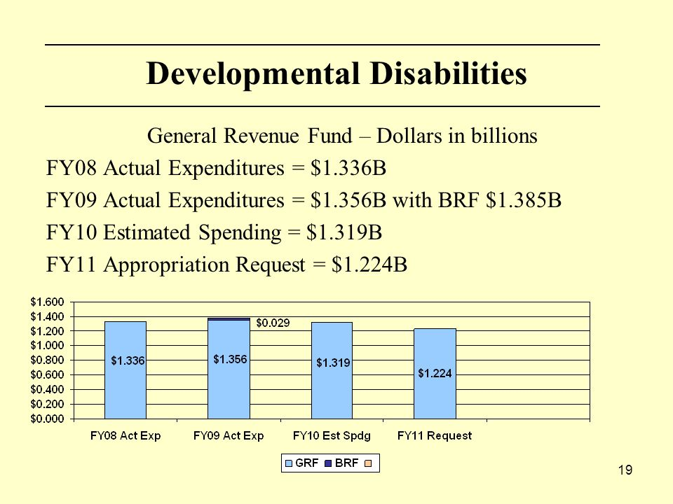 19 Developmental Disabilities General Revenue Fund – Dollars in billions FY08 Actual Expenditures = $1.336B FY09 Actual Expenditures = $1.356B with BRF $1.385B FY10 Estimated Spending = $1.319B FY11 Appropriation Request = $1.224B
