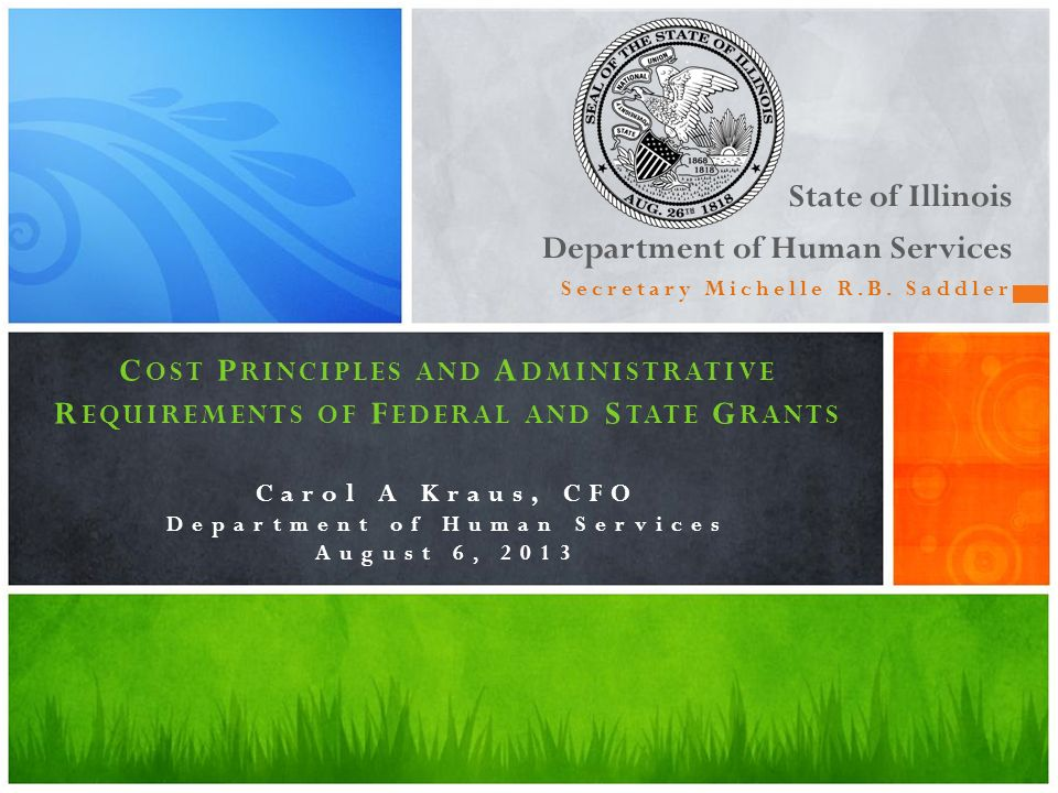 State of Illinois Department of Human Services Secretary Michelle R.B. Saddler C OST P RINCIPLES AND A DMINISTRATIVE R EQUIREMENTS OF F EDERAL AND S T