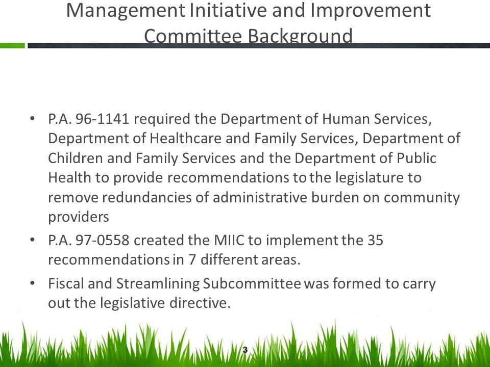 Management Initiative and Improvement Committee Background P.A. 96-1141 required the Department of Human Services, Department of Healthcare and Family