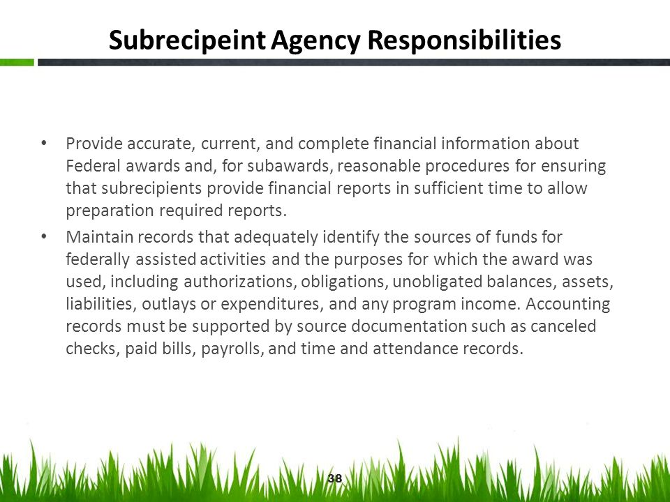 Subrecipeint Agency Responsibilities Provide accurate, current, and complete financial information about Federal awards and, for subawards, reasonable