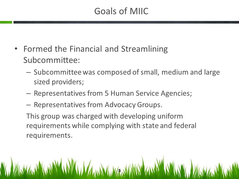 Goals of MIIC Formed the Financial and Streamlining Subcommittee: – Subcommittee was composed of small, medium and large sized providers; – Representa