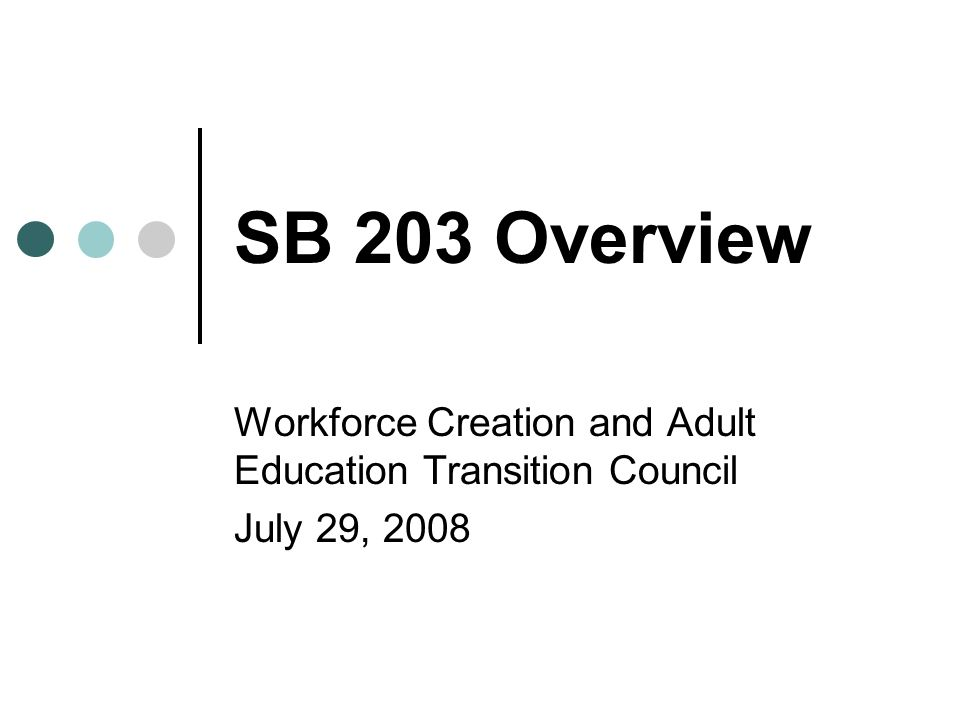 SB 203 Overview Workforce Creation and Adult Education Transition Council July 29, 2008
