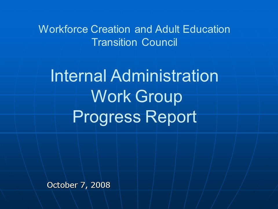 October 7, 2008 Workforce Creation and Adult Education Transition Council Internal Administration Work Group Progress Report