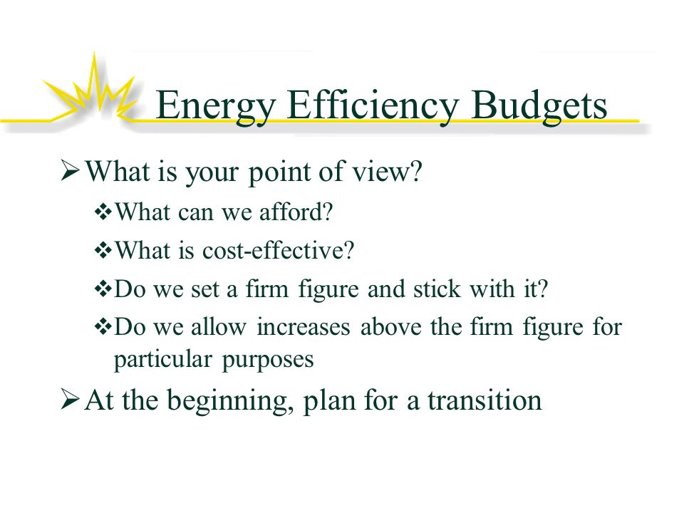 Energy Efficiency Budgets What is your point of view.