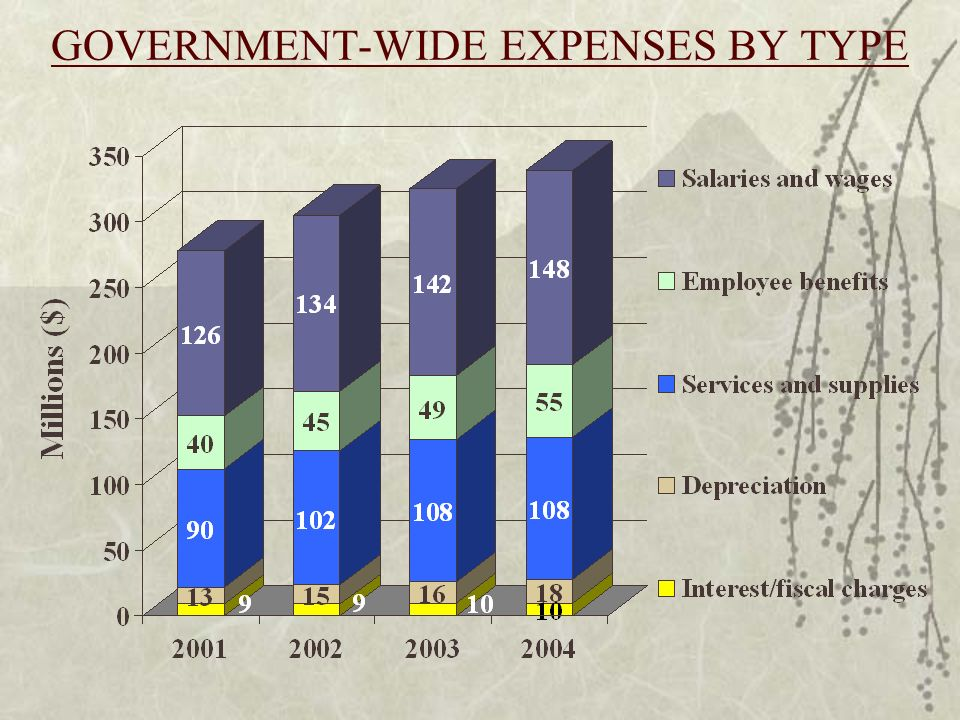 GOVERNMENT-WIDE EXPENSES BY TYPE
