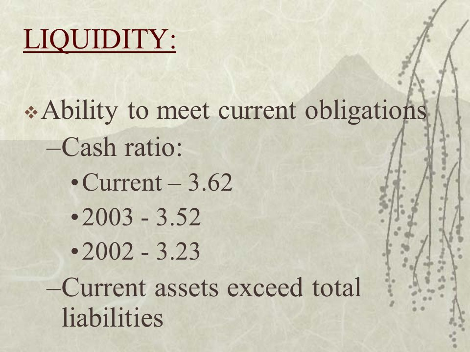 LIQUIDITY: Ability to meet current obligations –Cash ratio: Current – 3.62 2003 - 3.52 2002 - 3.23 –Current assets exceed total liabilities
