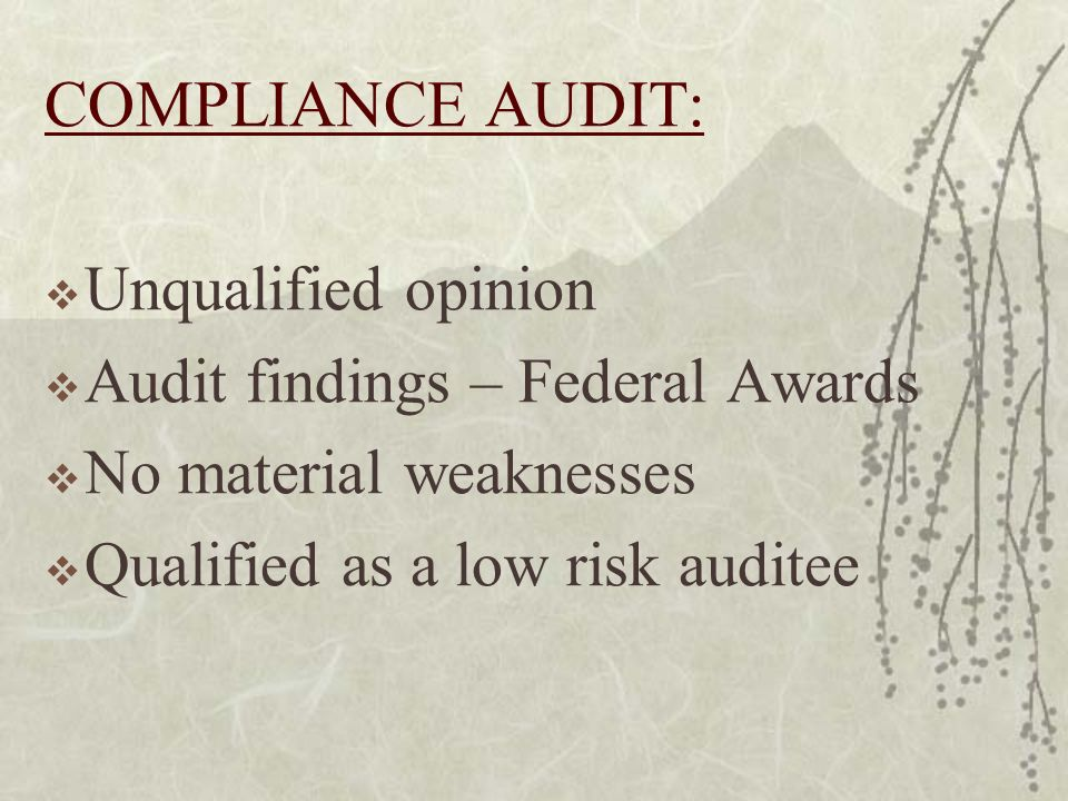 COMPLIANCE AUDIT: Unqualified opinion Audit findings – Federal Awards No material weaknesses Qualified as a low risk auditee