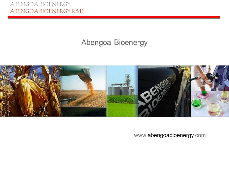 ABENGOA BIOENERGY ABENGOA BIOENERGY R&D Abengoas hybrid plant concept 35 million bushels grain facility –88 million gallons ethanol –290,000 tons feed co-product 245,000 BD metric tons biomass (315,000 short tons-as is) –400 BD metric tons/day 15 million gallons ethanol –300 BD metric tons/day Syngas production 1,597,200 MMBTU (syngas+flue gas) –100% steam needs of biomass processing –~30% steam needs of grain to ethanol processing Syngas can be utilized for production of chemical intermediates Opportunity to leverage infrastructure and many plant operations DOE integrated biorefinery proposal, cont