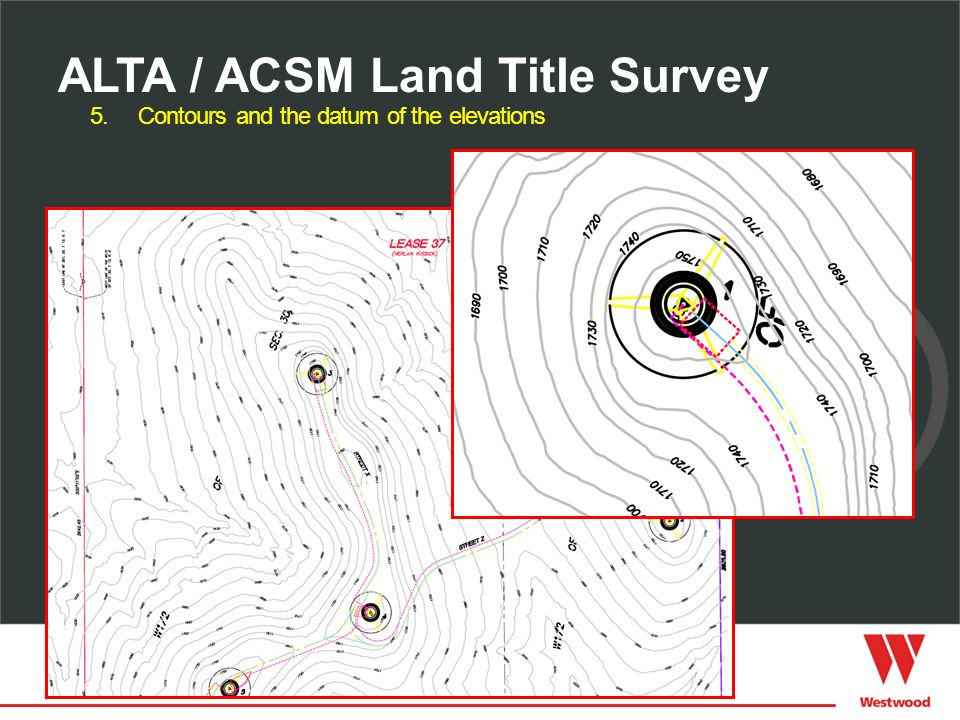 5.Contours and the datum of the elevations ALTA / ACSM Land Title Survey
