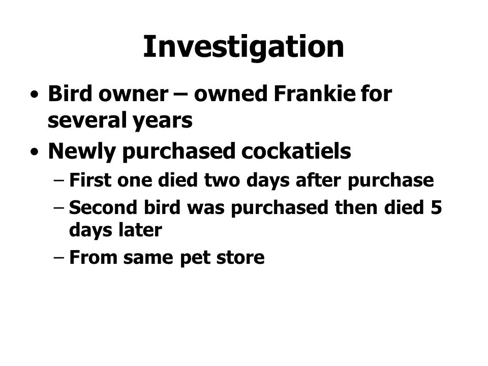 Investigation Bird owner – owned Frankie for several years Newly purchased cockatiels –First one died two days after purchase –Second bird was purchas