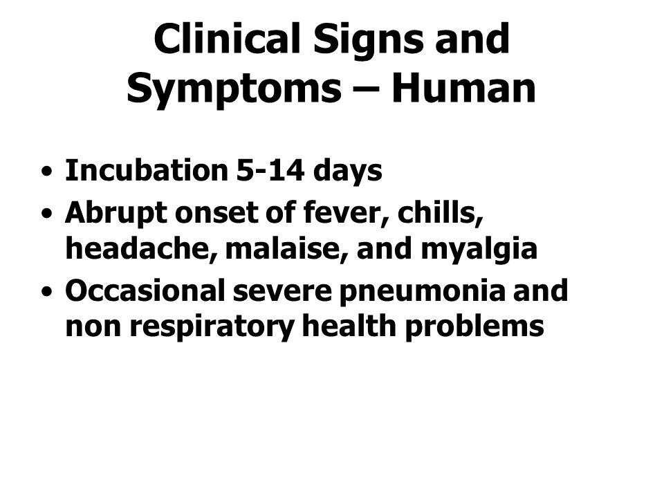 Clinical Signs and Symptoms – Human Incubation 5-14 days Abrupt onset of fever, chills, headache, malaise, and myalgia Occasional severe pneumonia and