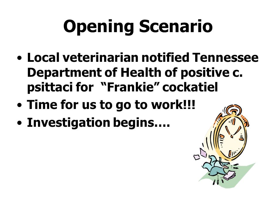 Opening Scenario Local veterinarian notified Tennessee Department of Health of positive c. psittaci for Frankie cockatiel Time for us to go to work!!!