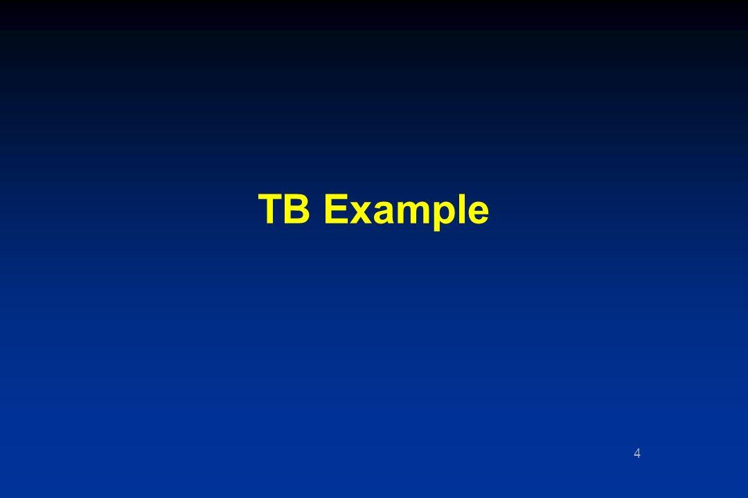 4 TB Example