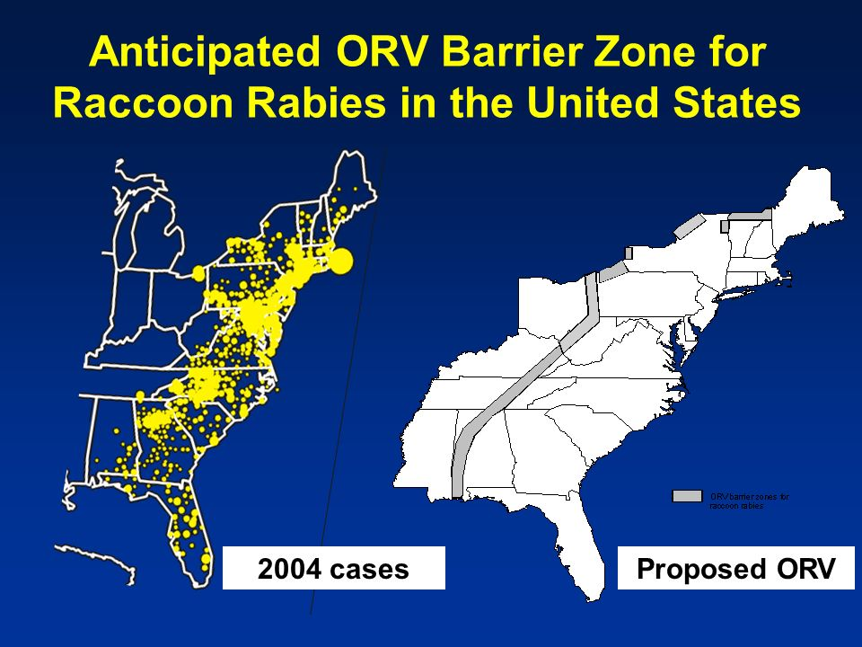 Anticipated ORV Barrier Zone for Raccoon Rabies in the United States 2004 casesProposed ORV