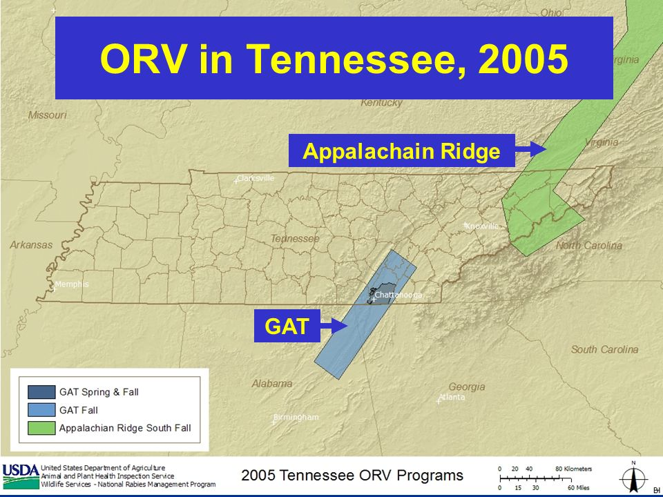 ORV in Tennessee, 2005 GAT Appalachain Ridge