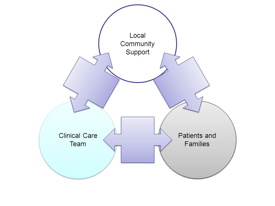 Clinical Care Team Clinical Care Team Patients and Families Local Community Support Institute of Medicine (IOM).
