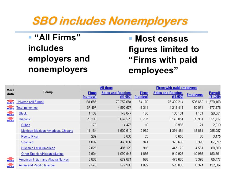 SBO includes Nonemployers All Firms includes employers and nonemployers Most census figures limited to Firms with paid employees
