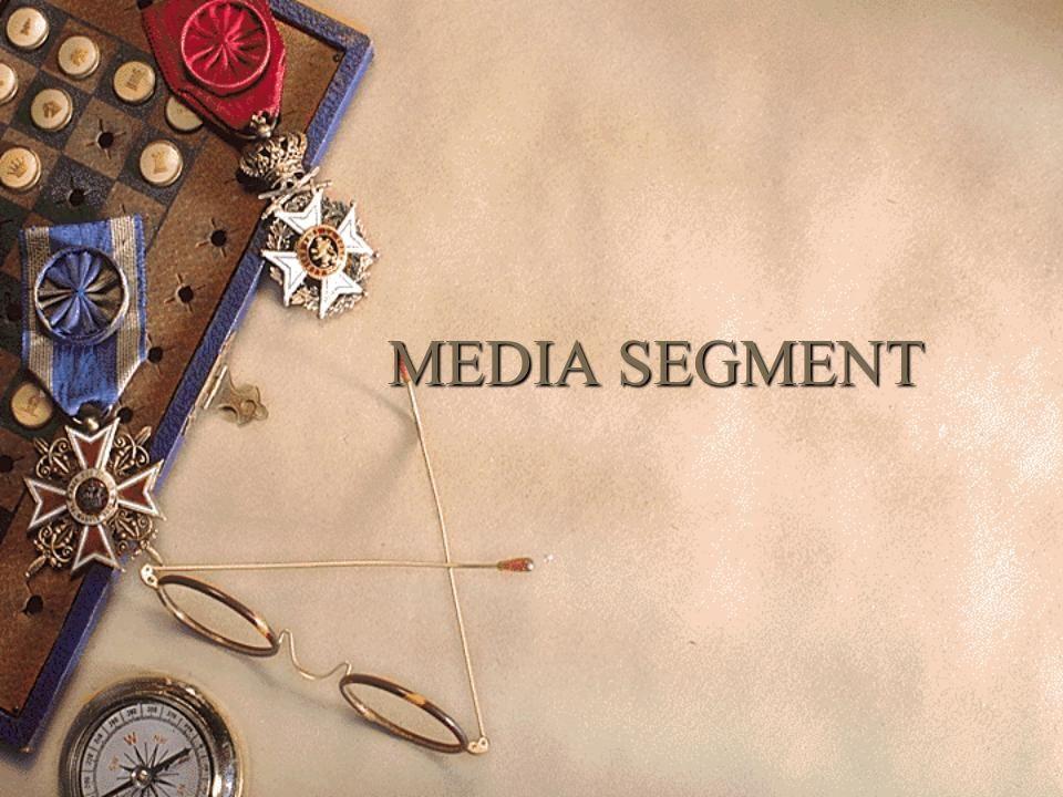 MEDIA SEGMENT