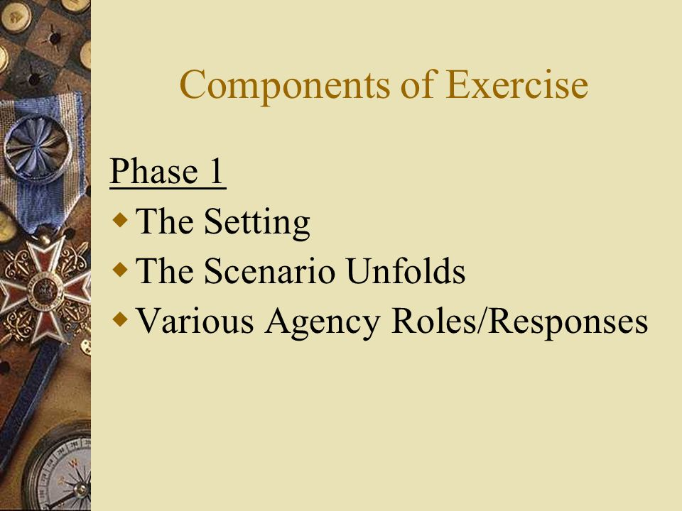 Components of Exercise Phase 1 The Setting The Scenario Unfolds Various Agency Roles/Responses