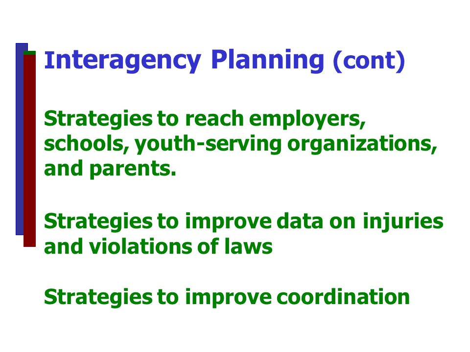 I nteragency Planning (cont) Strategies to reach employers, schools, youth-serving organizations, and parents. Strategies to improve data on injuries