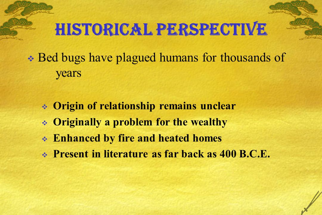 Historical perspective Bed bugs have plagued humans for thousands of years Origin of relationship remains unclear Originally a problem for the wealthy Enhanced by fire and heated homes Present in literature as far back as 400 B.C.E.