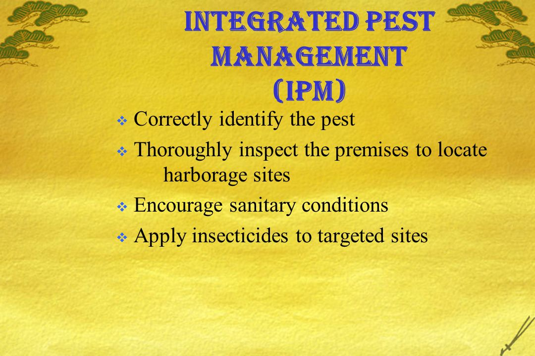 Integrated Pest Management (IPM) Correctly identify the pest Thoroughly inspect the premises to locate harborage sites Encourage sanitary conditions Apply insecticides to targeted sites