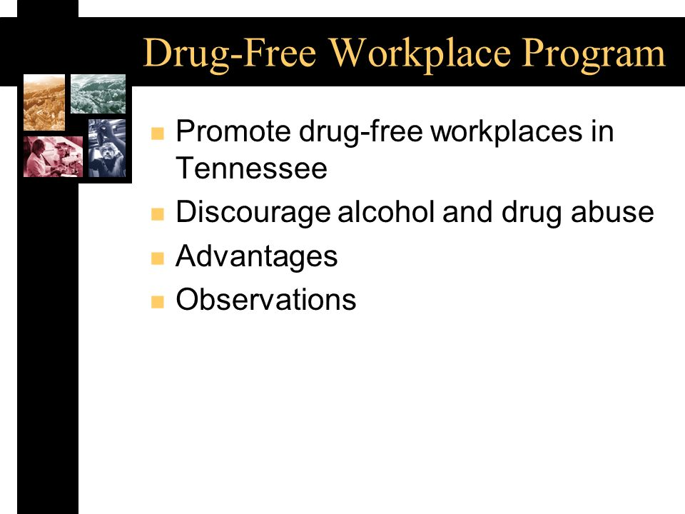 Drug-Free Workplace Program n Promote drug-free workplaces in Tennessee n Discourage alcohol and drug abuse n Advantages n Observations