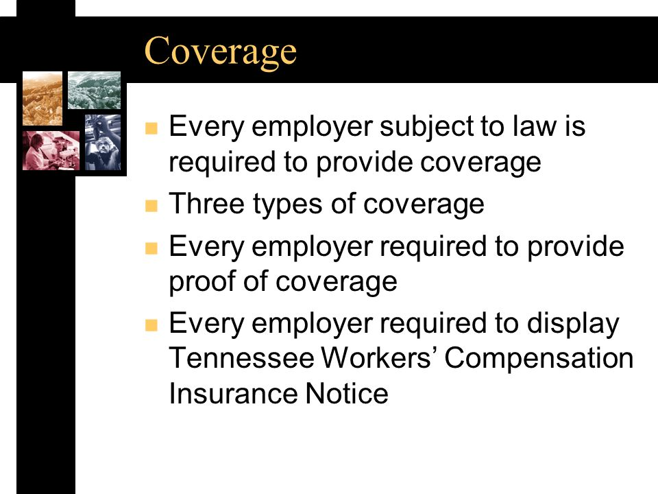 Coverage n Every employer subject to law is required to provide coverage n Three types of coverage n Every employer required to provide proof of coverage n Every employer required to display Tennessee Workers Compensation Insurance Notice