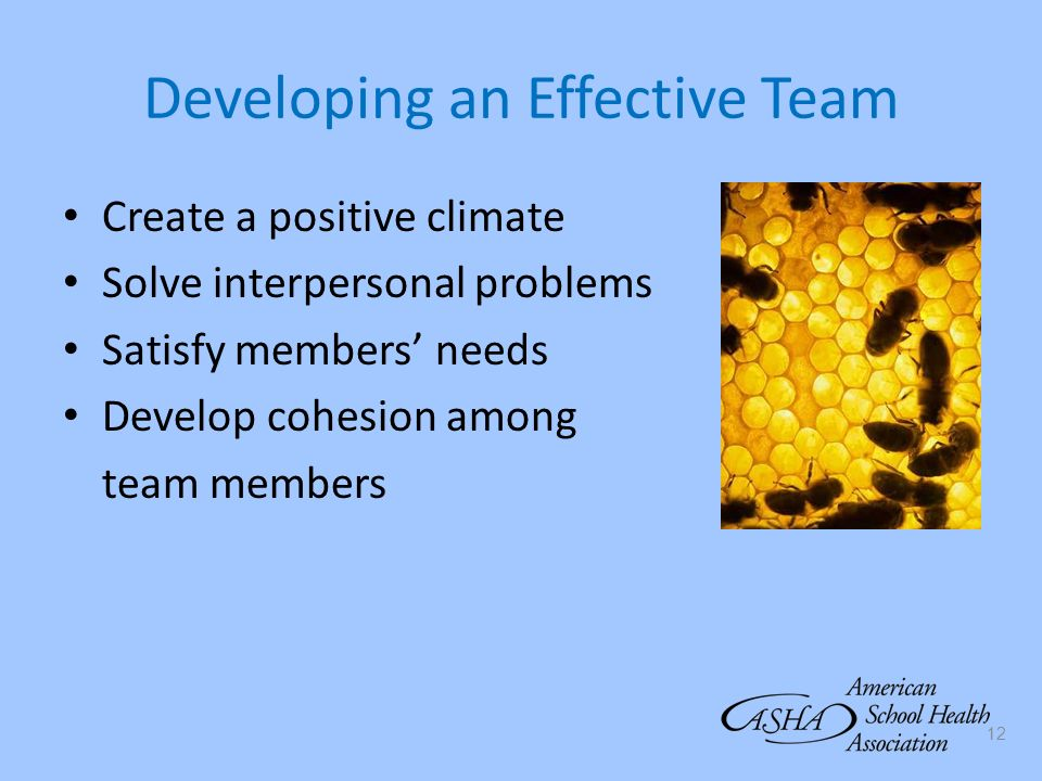 12 Developing an Effective Team Create a positive climate Solve interpersonal problems Satisfy members needs Develop cohesion among team members