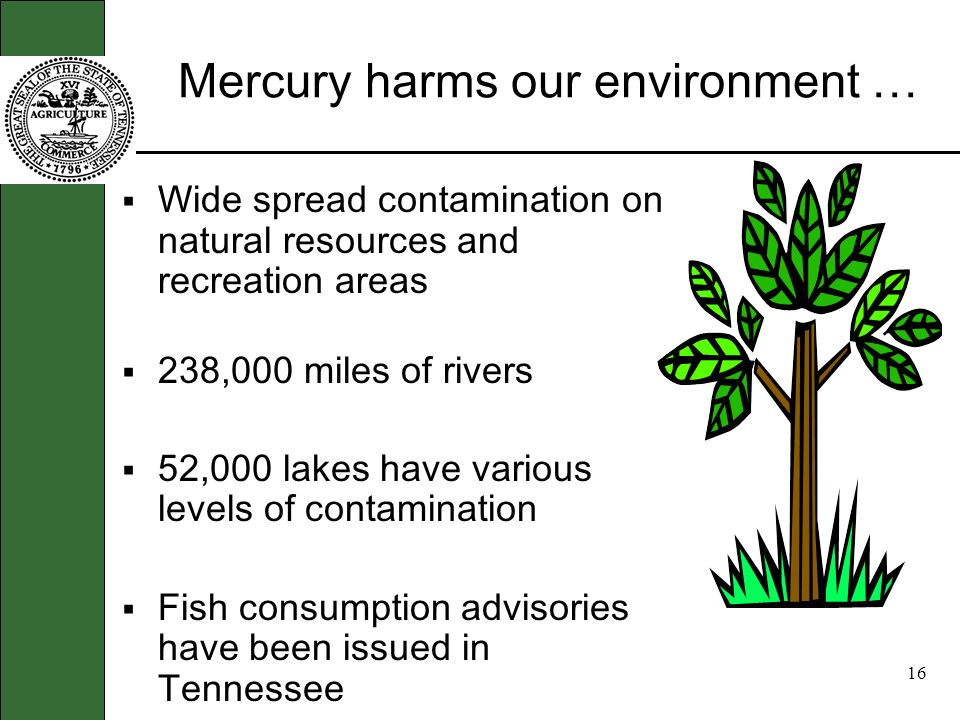 15 Mercury can harm our health … Especially children, the elderly, those with respiratory problems, and those that spend a lot of time outdoors Aggravates asthma and increases susceptibility to illnesses like pneumonia and bronchitis