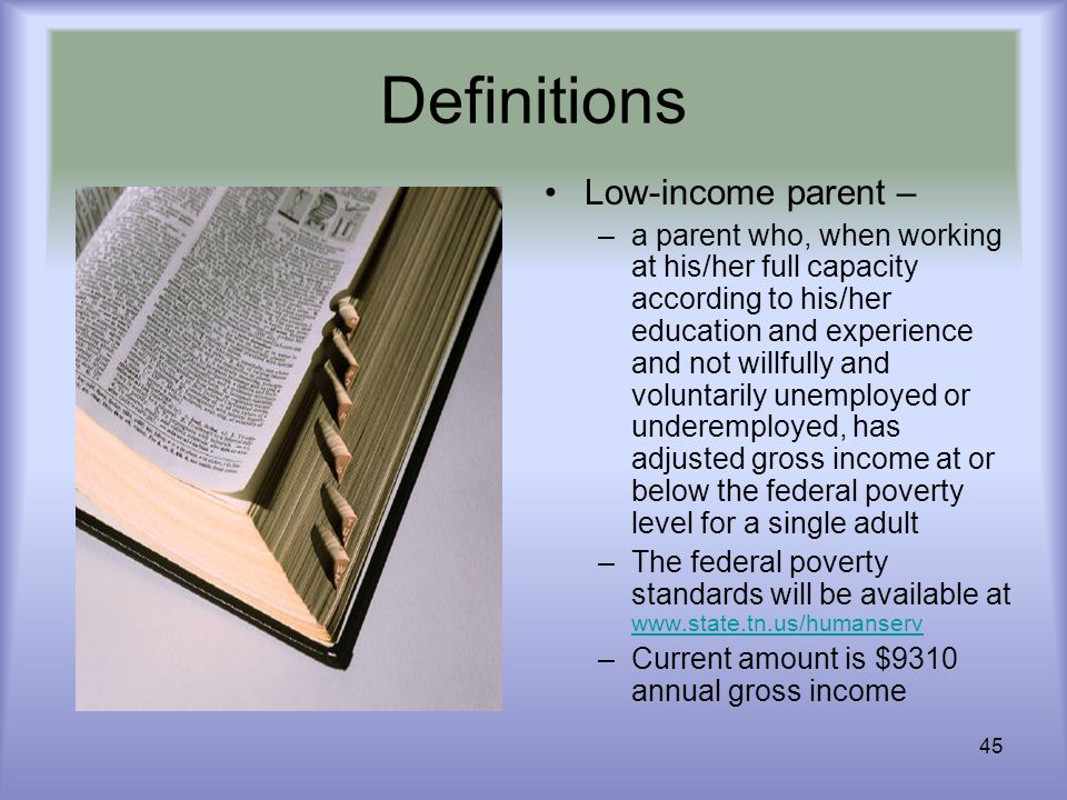 45 Definitions Low-income parent – –a parent who, when working at his/her full capacity according to his/her education and experience and not willfull