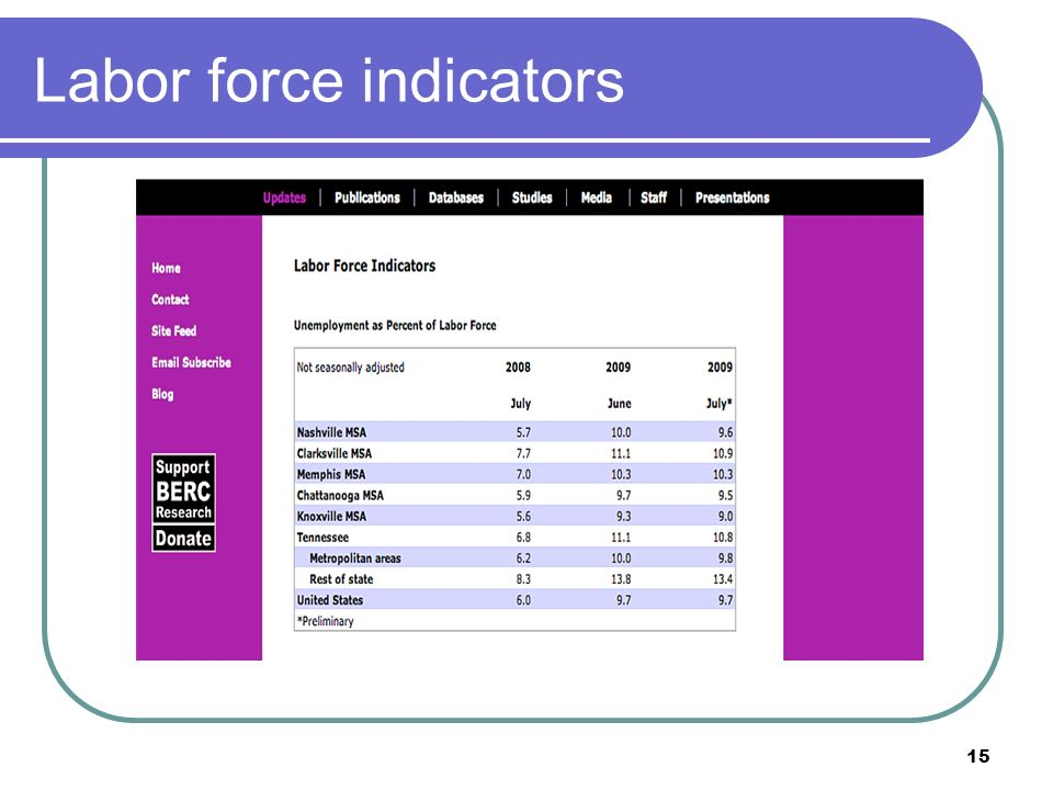 15 Labor force indicators
