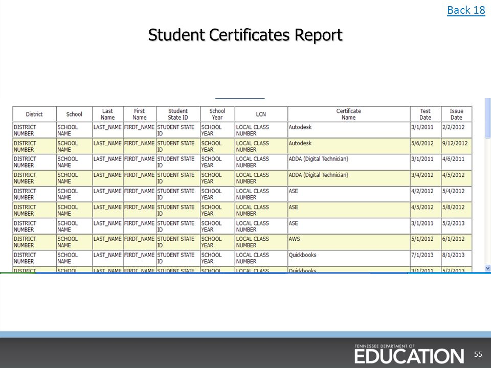 Student Certificates Report 55 Back 18