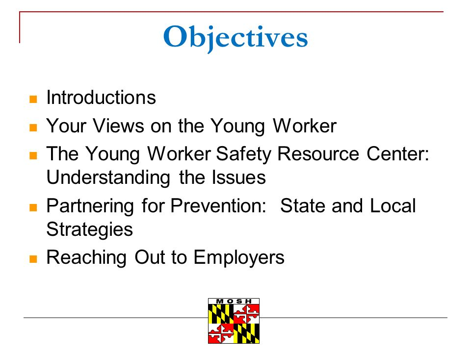 Objectives Introductions Your Views on the Young Worker The Young Worker Safety Resource Center: Understanding the Issues Partnering for Prevention: State and Local Strategies Reaching Out to Employers