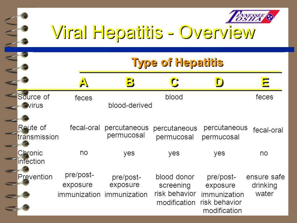 Viral Hepatitis - Overview A A B B C C D D E E Source of virus feces blood/ blood-derived body fluids blood/ blood-derived body fluids blood/ blood-de