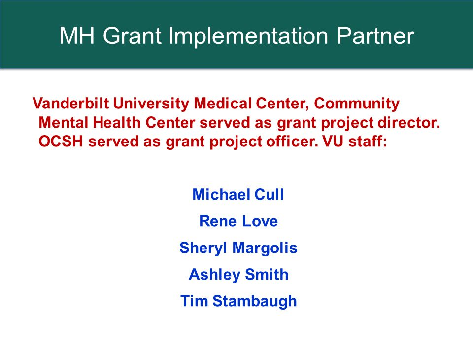 MH Grant Implementation Partner Vanderbilt University Medical Center, Community Mental Health Center served as grant project director.