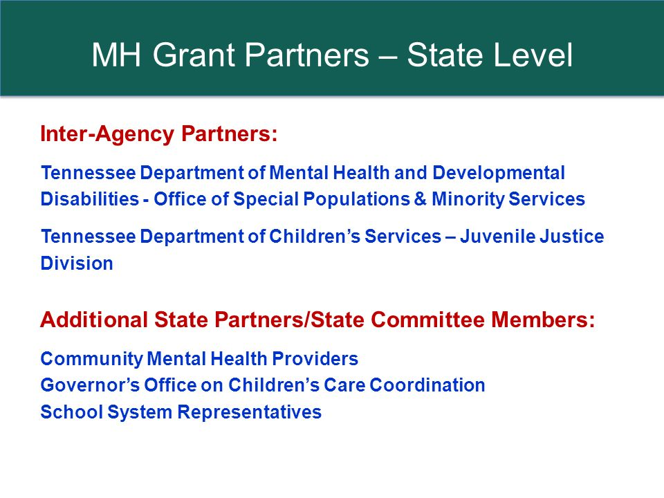 MH Grant Partners – State Level Inter-Agency Partners: Tennessee Department of Mental Health and Developmental Disabilities - Office of Special Populations & Minority Services Tennessee Department of Childrens Services – Juvenile Justice Division Additional State Partners/State Committee Members: Community Mental Health Providers Governors Office on Childrens Care Coordination School System Representatives