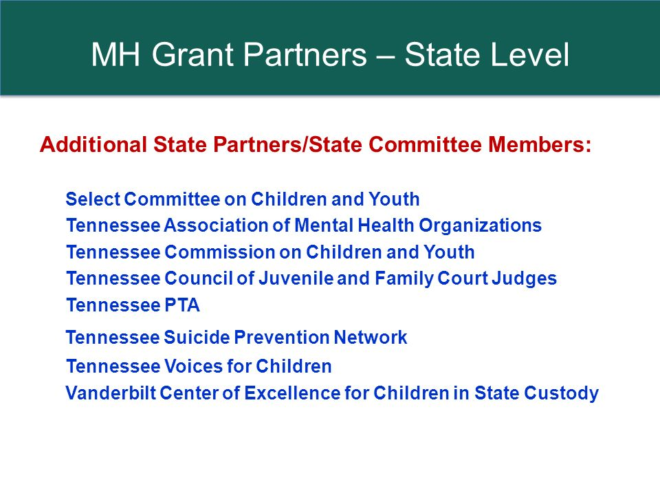MH Grant Partners – State Level Additional State Partners/State Committee Members: Select Committee on Children and Youth Tennessee Association of Mental Health Organizations Tennessee Commission on Children and Youth Tennessee Council of Juvenile and Family Court Judges Tennessee PTA Tennessee Suicide Prevention Network Tennessee Voices for Children Vanderbilt Center of Excellence for Children in State Custody